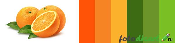 выбор цвета при изготовление логотипа